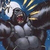 Mikhlo the gorilla