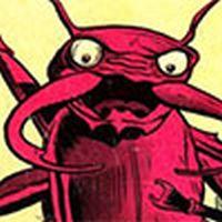 Scarlet Beetle